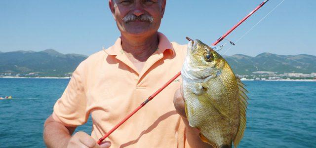 Rockfishing – ловля черноморского «дорадо».