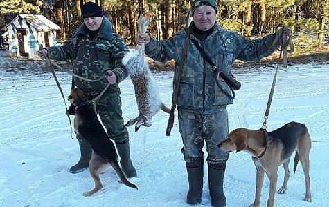 В Кирове обсудили натаску и нагонку собак вне сроков охоты