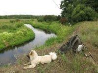Рыбалка на голавлевой речке