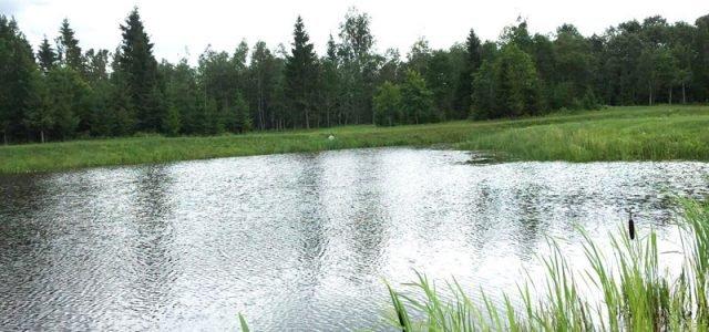 Интересная рыбалка на секретном озере