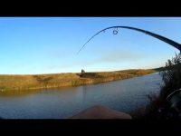 Кто же это такой! Семь минут три щуки. Рыбалка на спиннинг осенью.