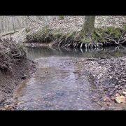 Посмотрите видео нашего соратника по охране и очистке природы — Владимира