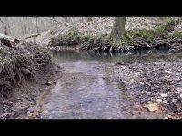 Посмотрите видео нашего соратника по охране и очистке природы - Владимира