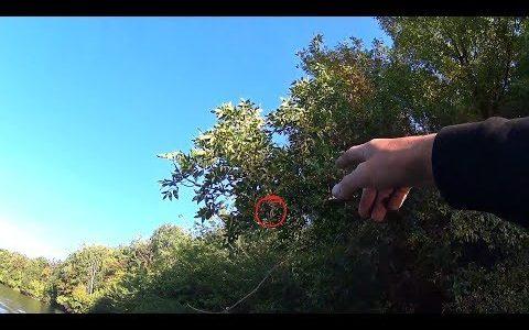 Вот что я нашел на рыбалке, на дереве! Рыбалка с Тёзкой. Ловля щуки осенью.