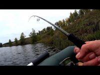 Клюет хорошо, но есть одно НО .........! Рыбалка на спиннинг осенью.