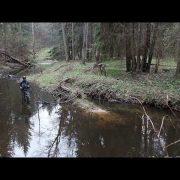 Реки, речки, речушки, ручьи… Сталкер на халяву или хозяин ручья?