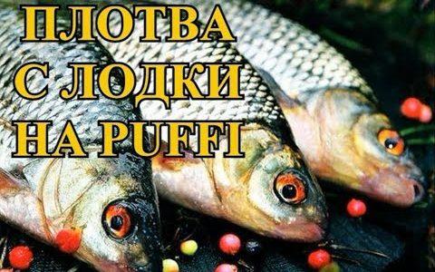 ПЛОТВА с ЛОДКИ на PUFFI… $$$