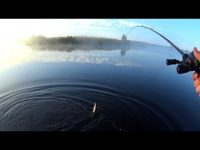 Рыбалка утром на незнакомом пруду.Ловля щуки на воблеры.