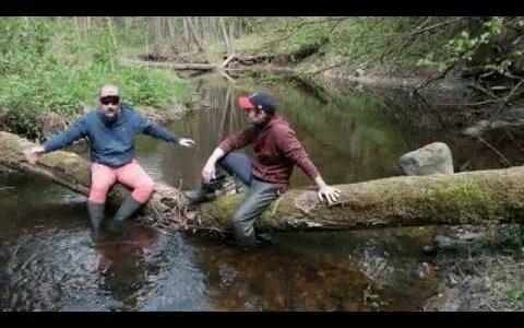 Краудфандинг проекта зарыбления лососевыми малых рек средней полосы.
