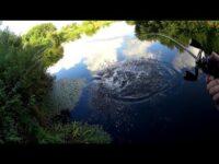 Вот так рыбалка!Эта река таит много сюрпризов!Рыбалка на спиннинг.