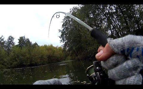 Я таких не ожидал увидеть в маленькой речке!!!Уловистая приманка!Рыбалка на спиннинг.