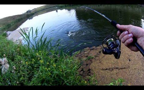 Нифига себе!!!Я таких еще не ловил!!Рыбалка на спиннинг.