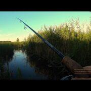 Вот так ручей!!!Вот что можно поймать в маленьком ручье!!!Рыбалка на спиннинг летом 2017.