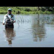 Мы едем на рыбалку только за рыбой? А если нет, то чем же нам помешает высокая вода?