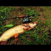 ловля щуки на джиг | ловля на спиннинг | щука видео | 1080