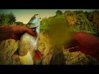 ловля на джиг, жерех, щука, видео